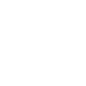 Working the streets